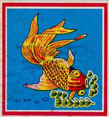 poisson -integrity recto